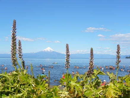 The volcano Osorno (seen from Frutillar)
