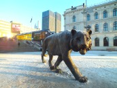 "The symbol of Oslo - the tiger. The city is called ""The Tiger City""!"